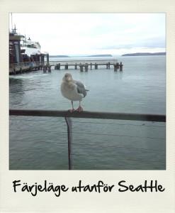 Seattle19